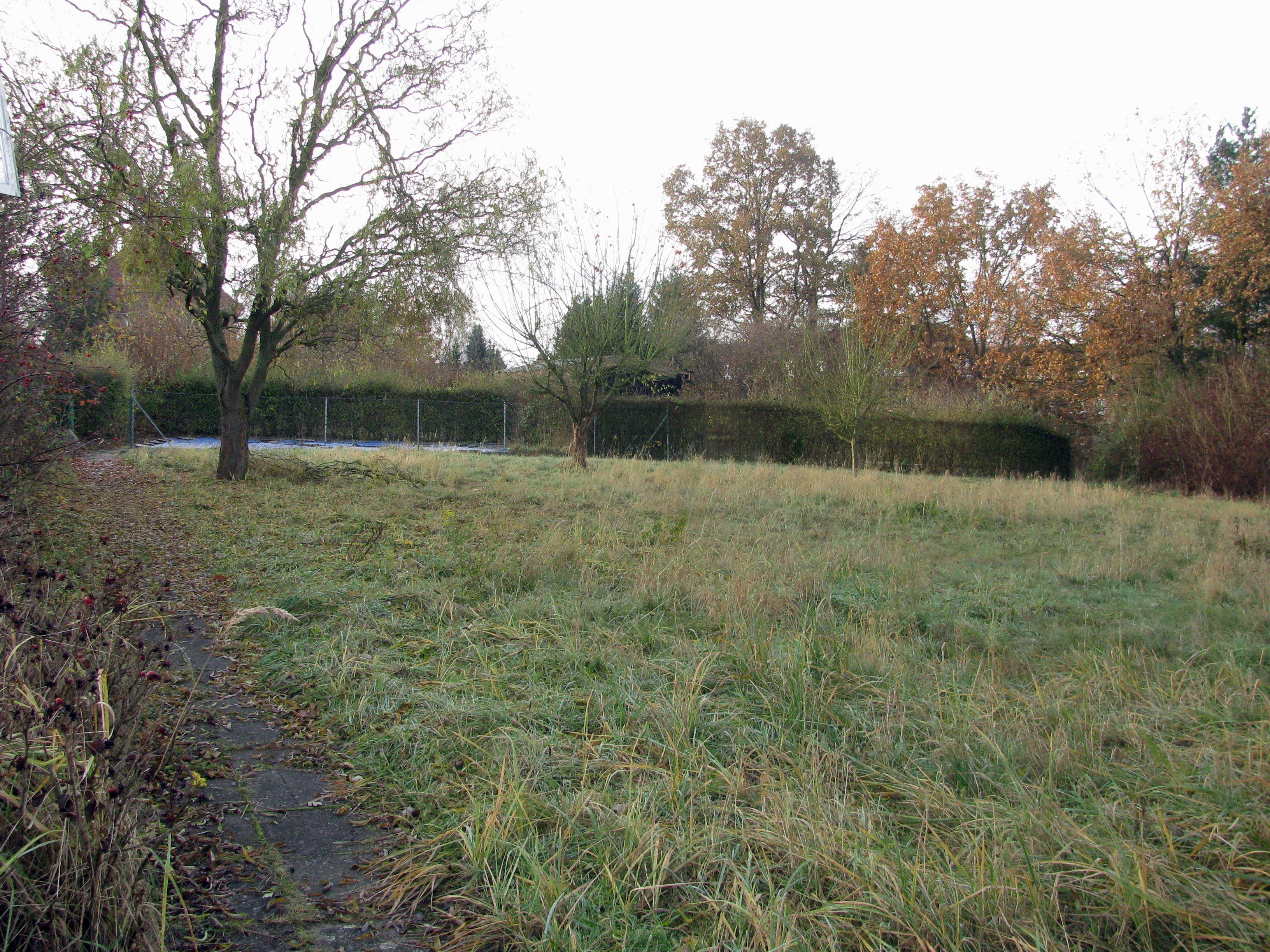 Bild_Grundstück